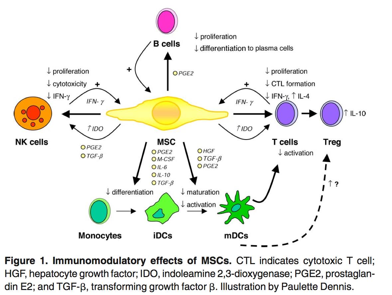 antiinflamatoires steroidiens