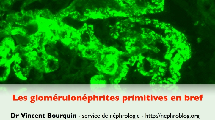 Glomérulonéphrites en bref.001