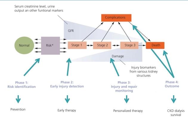Circulating miRNAs as useful biomarkers of AKI in clinical practice.[6]